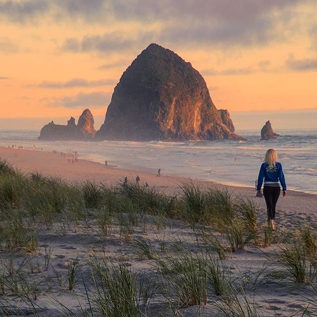 """""""I have wandered all my life, and I have also traveled; the difference between the two being this, that we wander for distraction, but we travel for fulfillment."""" – Hilaire Belloc  More... photo by @matthew__cohen  Location: Cannon Beach  #quote #inspire  #wanderlust #outdoorslife #outdoorshoot #outdoorsisfree #outdoorstyle #outdoorsession #outdoorsman #wanderlusters #exploretheworld #hikingwithfriends #hikinglife #hikingtrip #hikingday #hikingadventure #hikingworldwide #hikingculture…"""