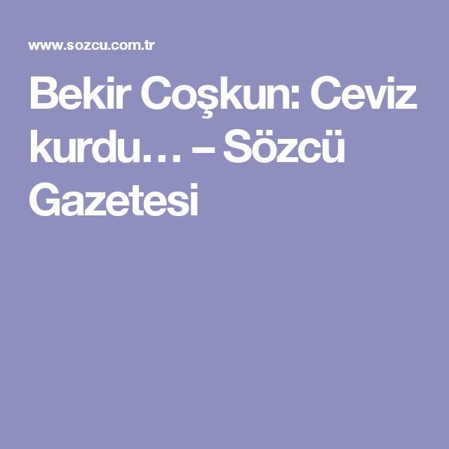 Bekir Coşkun: Ceviz kurdu… – Sözcü Gazetesi