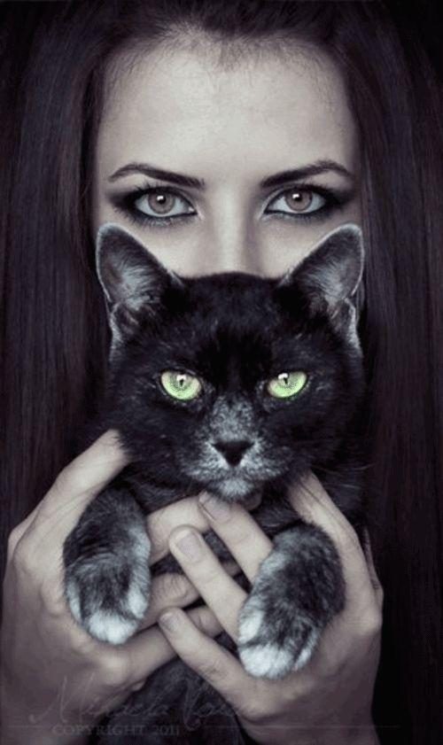 Картинки на аву девушек с кошками