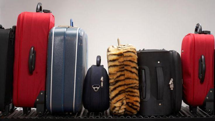 Wymiary bagażu podręcznego i rejestrowanego oraz opłaty za nadbagaż w liniach lotniczych: Ryanair, Wizzair, easyJet, LOT, Lufthansa i innych