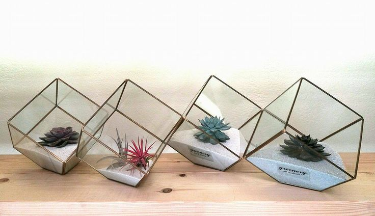 Golden terrariums with succulents #greenery #pots #planters #airplants #succulents #cactus #plants #chania #greece
