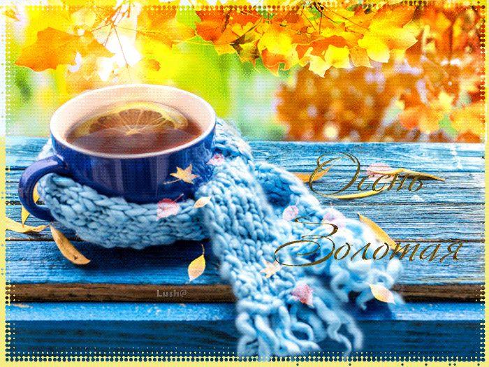 Открытки чашка чая в холодный осенний день с добрым утром, картинки смеющихся