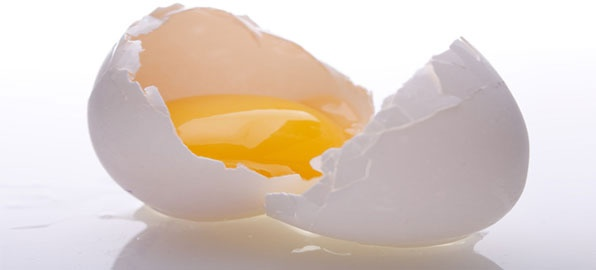 The Magic Bullet Of Protein - Weight Loss