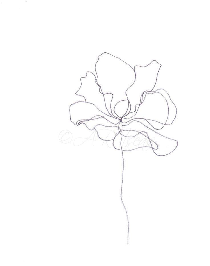 """Minimalistische abstrakte botanische Bleistiftzeichnung Archivdruck """"Blume""""; giclee – Art.Pinindec"""