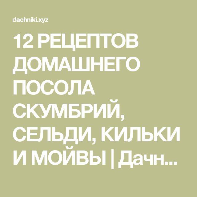 12 РЕЦЕПТОВ ДОМАШНЕГО ПОСОЛА СКУМБРИЙ, СЕЛЬДИ, КИЛЬКИ И МОЙВЫ | Дачники