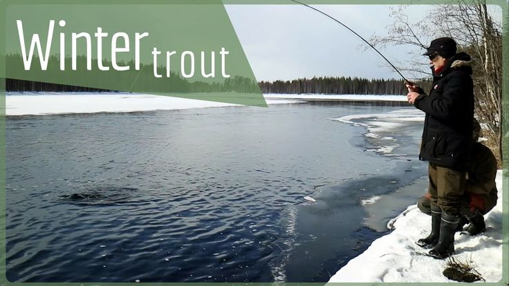 300 hours of fly fishing