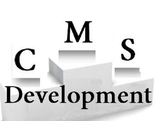 CMS development gives hassle free results. The websites developed with this are interactive, appealing and hold fresh information, due to the facility of constant updating and changes enabled in the website by these platforms.