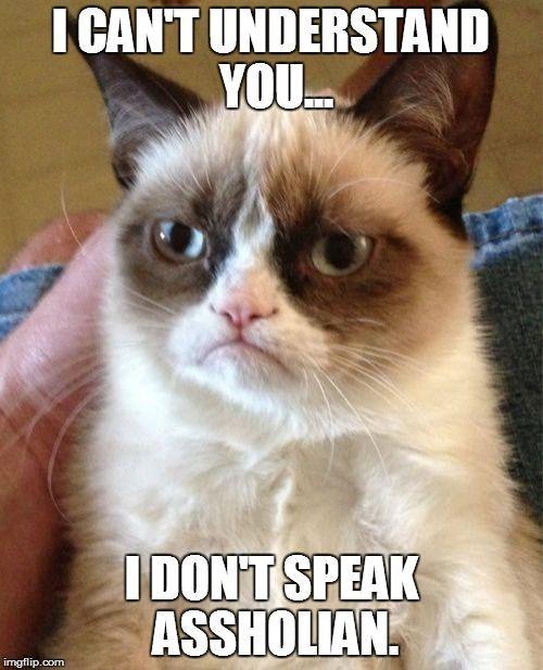 Grumpy Cat - often