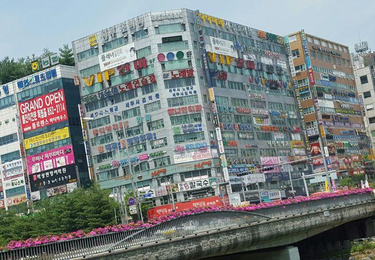 Bd. So loud. Seoul Korea.