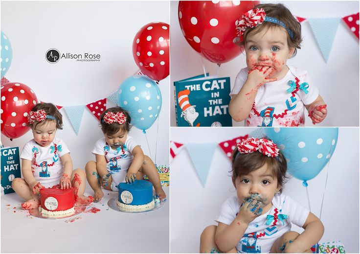 1st Birthday Cake Smash  Dr. Seuss Cake Smash Cat in the Hat  Twins Cake Smash Allison Rose Photography