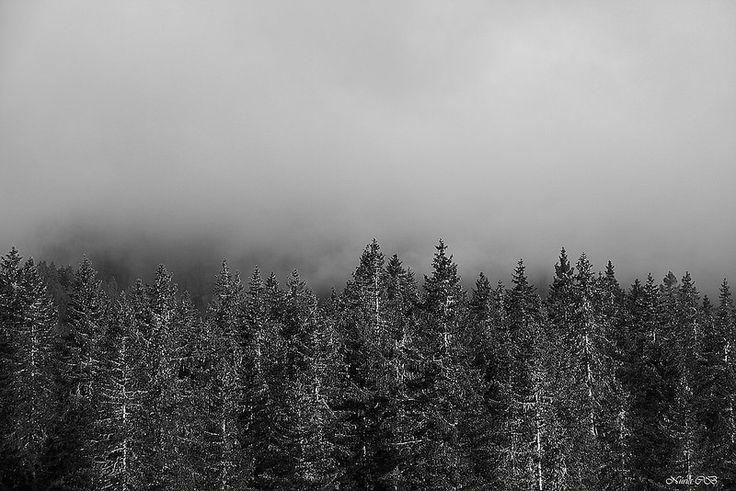 Boira- Niebla