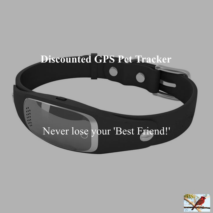 Silicon GPS Tracker Pets' Collar Real time GPS+LBS+WIFI Locator for Dog Cat GeofenceDeep discounts on over 300 products that enhance your life from day to day! Items for men and women of all ages, also teenagers. Take a look at our #jewelry #handbags #outerwear #electronicaccessories #watches #umbrellas #gpspettracker   #Purses #sunglasses #Songbirddeals