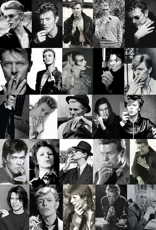 some of the many faces of David Bowie
