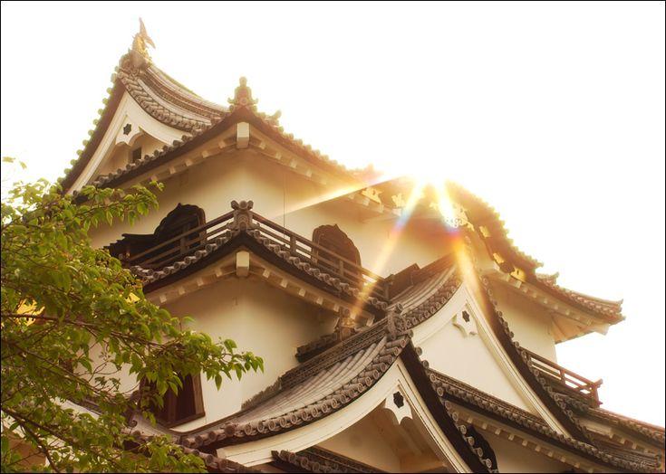 Hikari by heeeeman.deviantart.com