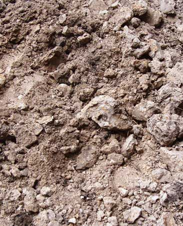 6 Common Lawn Problems and How to Fix Them-expanded shale added to thick clay soil
