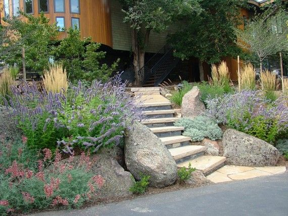 Definitely lots of lavenderFlagstone Step, Landscapes Renovation, Outdoor Fun, Front Yards, Outdoor Decor, Yards Landscapes, Gardens Xeric, Native Gardens, Gardens Growing