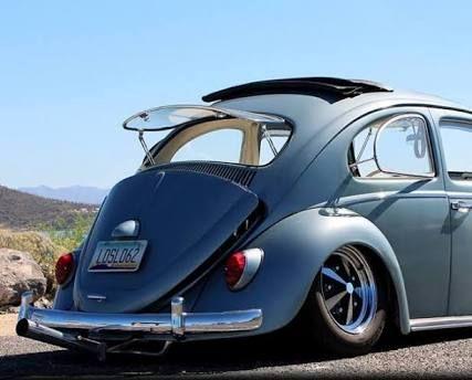 Resultado de imagen para beetle safari window