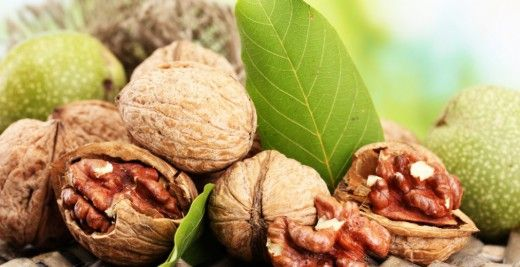 Дерево грецкого ореха растёт до 300-400 лет. А значит, укрываться в его тени и лакомиться плодами может как минимум 5 поколений одной семьи. Если вы только обустраиваете свой участок и мечтаете о семейном дереве, возможно, эта статья поможет сделать выбор в пользу грецкого ореха. Древесина грецкого ореха относится к ценным породам дерева, имеет красивый темный оттенок и часто используется для производства дорогой дизайнерской мебели. Из листьев делают натуральный краситель для...