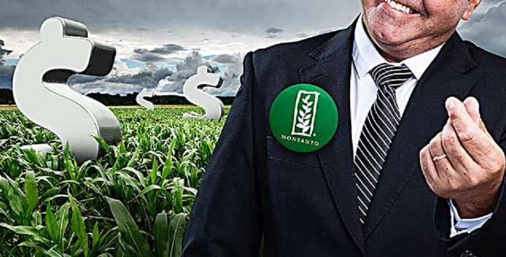Wikileaks: Mail αποκαλύπτει ότι στέλεχος της Monsanto εμπλέκεται σε έρανο για την καμπάνια της Κλίντον