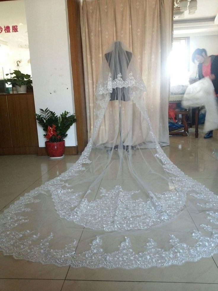 3 M Long Cathedral Length 2 T Lace Blings Sparkly Bridal Wedding Veil With Comb