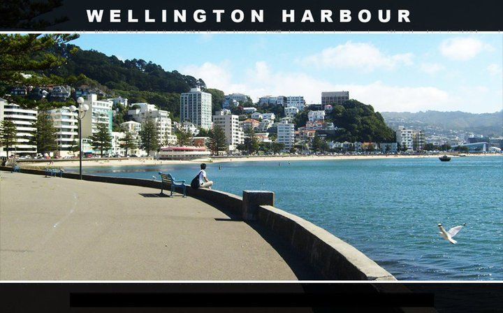 Wellington's waterfront on a sunny day, again, own photo while out for a stroll along Oriental Parade on a great Wellington day!