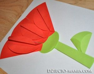 flower, wheel of origami, wishing cards, dziecio-mamia.com