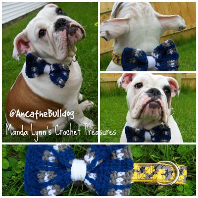44 Best Crochet For Pets Animals Images On Pinterest Crochet