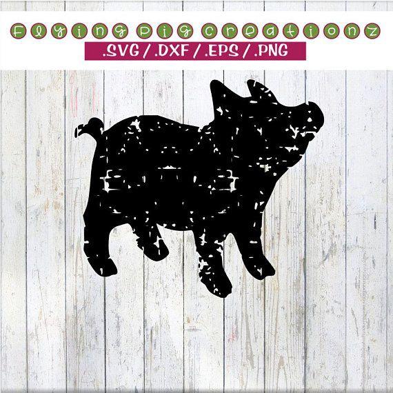 Download Pig SVG, Show Pig svg, Showstock svg, Grunge Pig svg ...