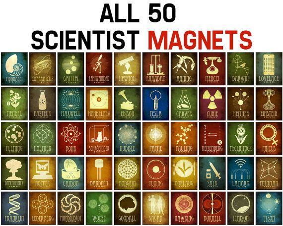 Science Magnets 50 Rock Star Scientists Decorative