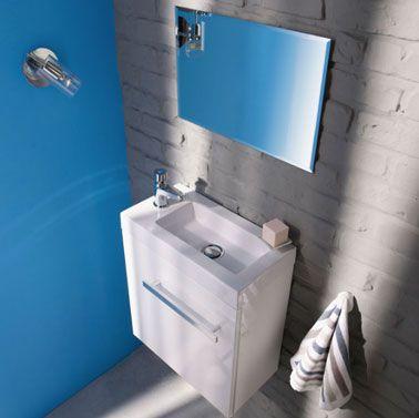 Beau Couleur Peinture Et Rangement Pour WC Et Toilette