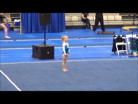 USGA 2013 - 2021 Level 3 Gymnastics Alina's Floor Routine 9.625 - YouTube