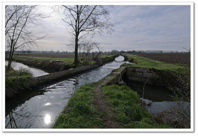 """Il Parco agricolo Sud Milano è un parco regionale della Lombardia che comprende un'estesa area a semicerchio tra Milano e il confine sud della sua provincia, interessando il territorio di sessantuno comuni. I parchi di """"cintura"""" di Milano rientrano nel territorio del parco sud e ne condividono i vincoli."""