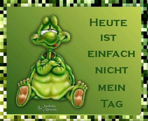 Good Morning In Austrian German : Best blumen und tiere images on pinterest funny