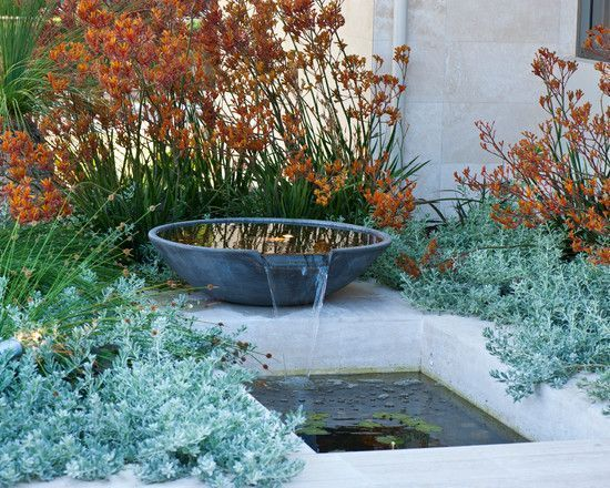 Kangaroo paw, water feature in an Australian garden designed by Peter Fudge. Architectural Landscape Design