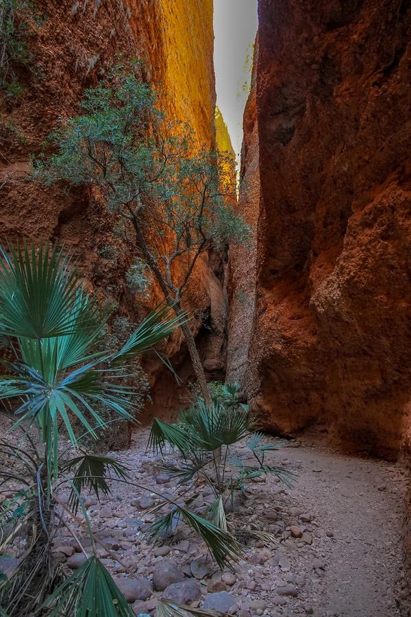 Echidna Chasm, Bungle Bungles, Purnululu National Park, Kimberley Region, Australia. Photo: Warren Hahnel