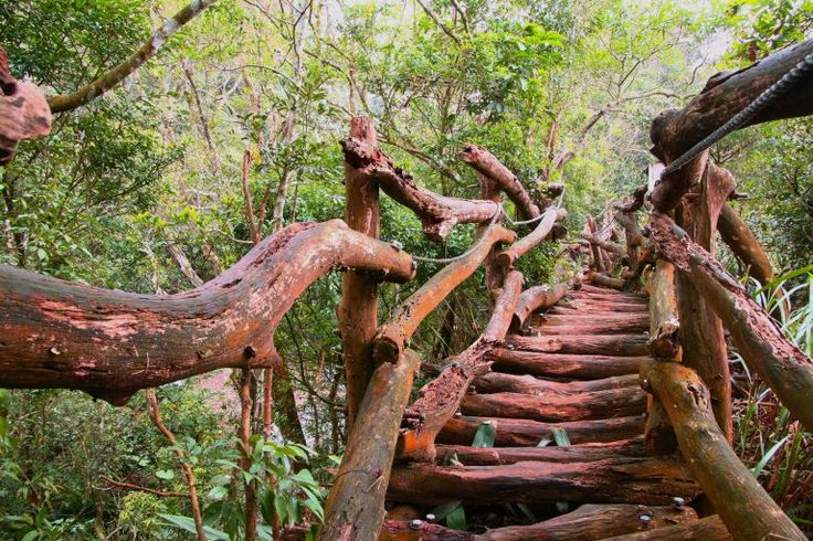 Dakeng Scenic Trails – Staircases to the sky Dakeng Scenic Trails, Taichung, Taiwan