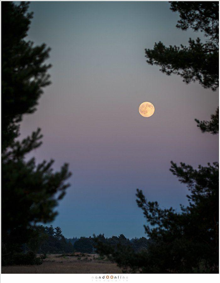 Fotograferen van de volle maan
