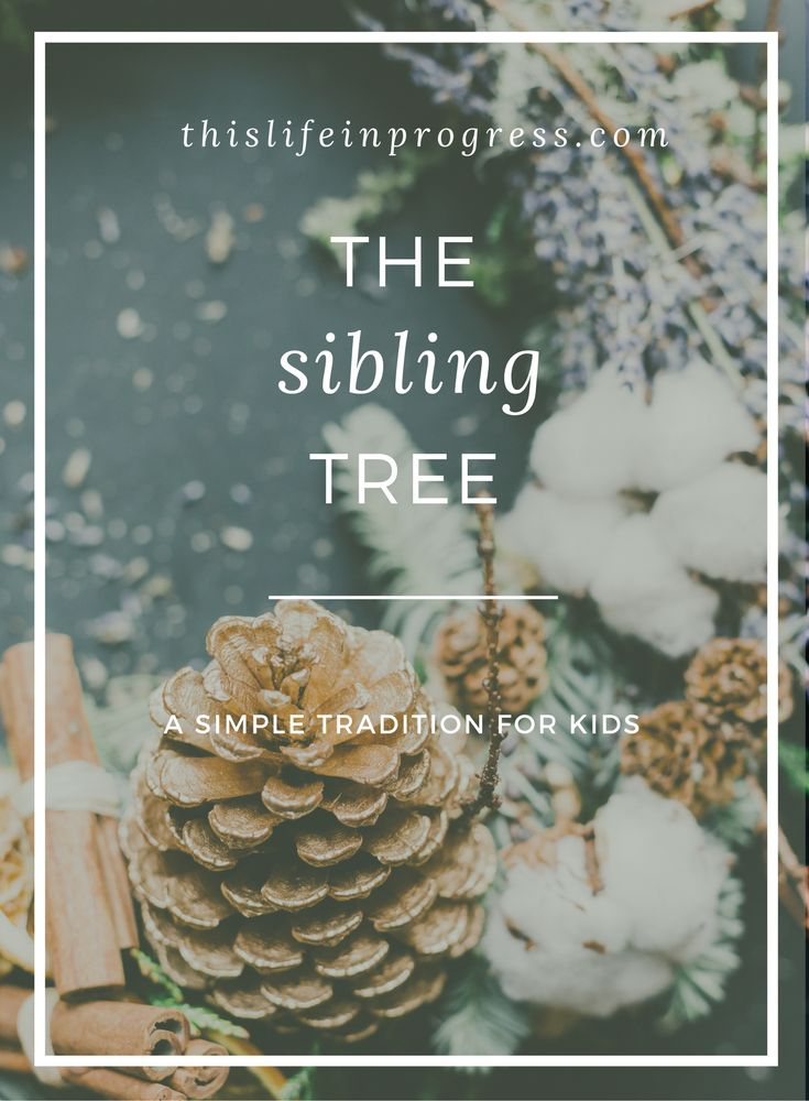 Family Traditions | Sibling Gift Exchange | Christmas | Stepfamily Tips | Stepfamily Bonding | Family Bonding | Holiday | Easy | Kids via @lifeinprogress8