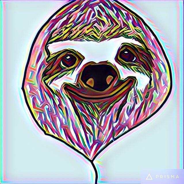 My sloth doodle in prisma! #sloth #sloths #prisma #art #doodle #kddoesdoodles