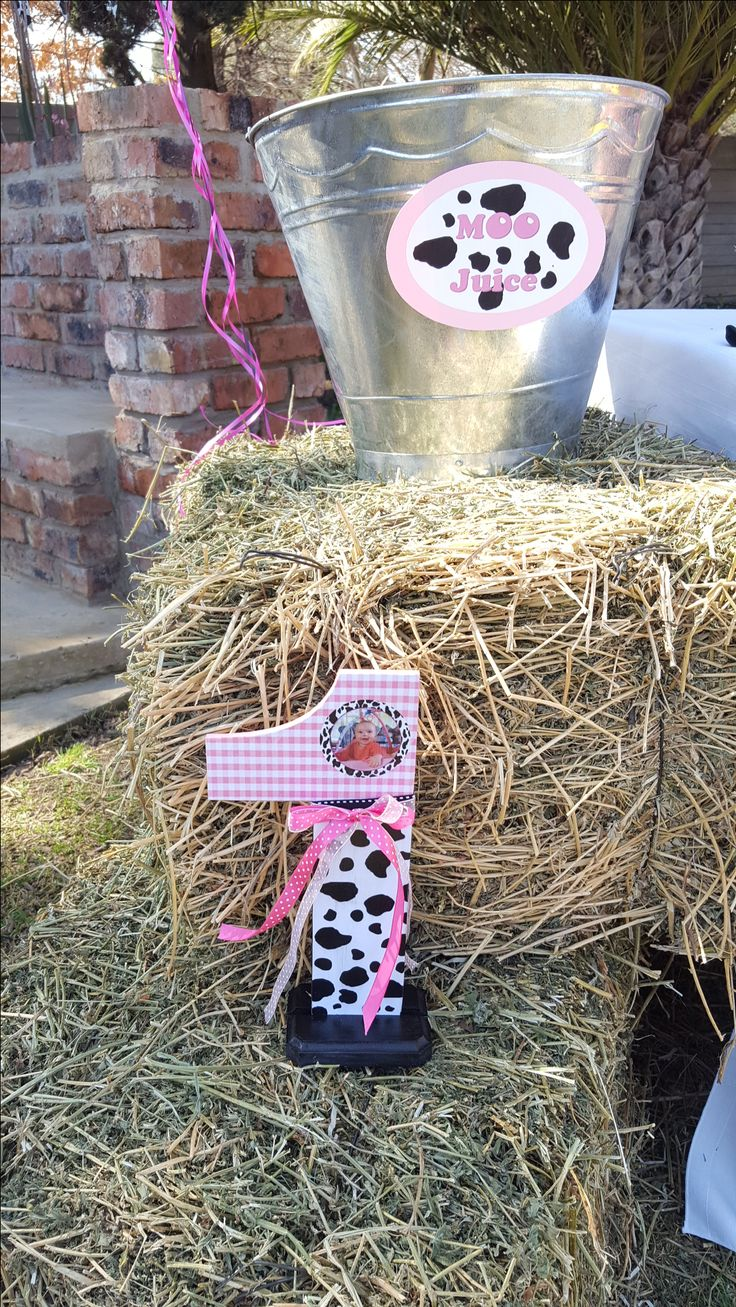 Moo juice- Cow Birthday Party