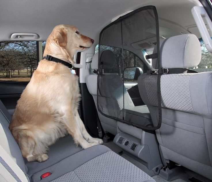 Front Seat Net Pet Barrier keeps pets from
