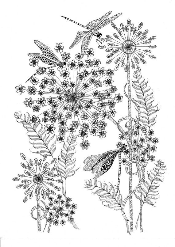 Printable coloring pages of a flower illustration & dragonfly art. An Instant digital download for adult colouring.
