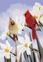 Spring Red Cardinal Bird Pair Bloom Flower Standard Flag by Custom Decor. Save 80 Off!. $6.00. Made of permanently dyed polyester. Garden Flag size is 28 x 48 inches. Fits standard flag holder. Spring Red Cardinal Bird Pair Bloom Flower Standard Flag