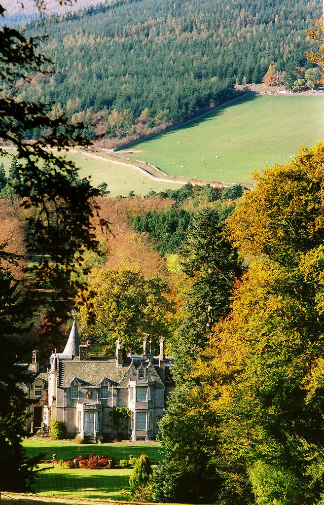 english-idylls:  Dawyck Botanic Garden, Peebles, Scotland by seth m.