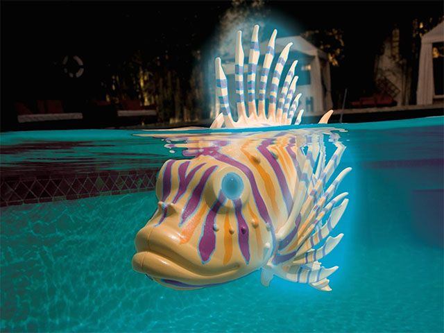 Swimming robot fish toy things to buy pinterest for Robot fish toy