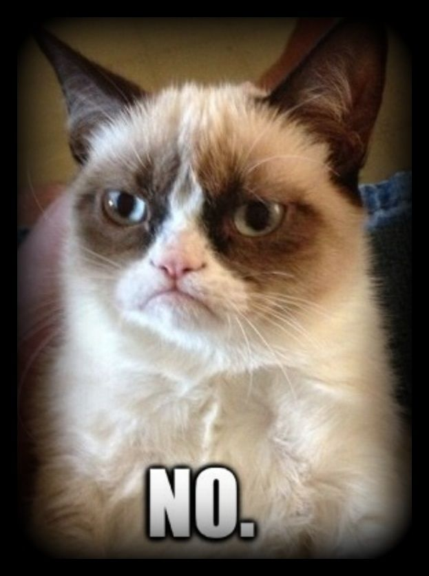 I felt like grumpy cat today. Everyone at work was all happy and joking and laughing and I was just like. NO.