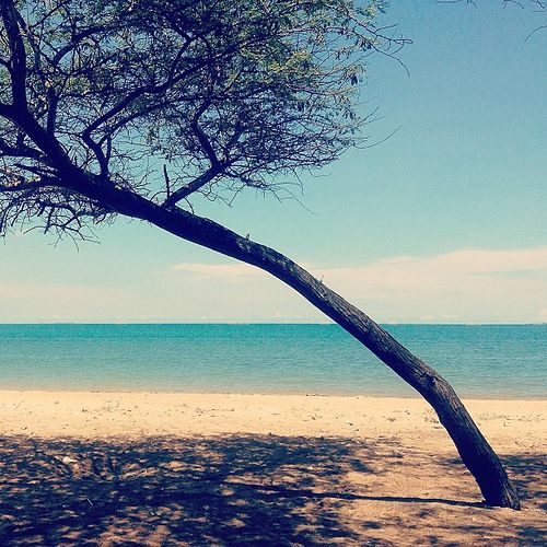 Lasiana Beach, Kupang . indonesia