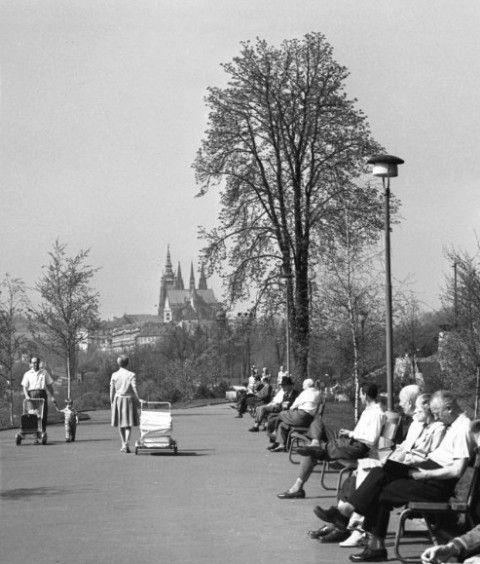 Neděle v sadech (1561), Praha, duben 1962 • |black and white photograph, Prague|