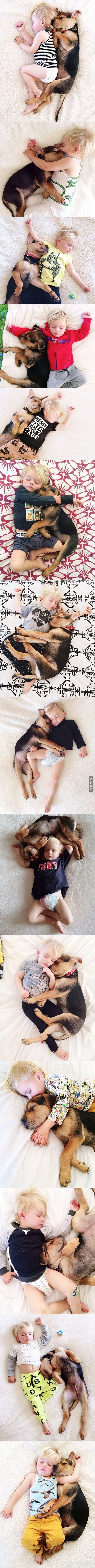 A toddler and his puppy continue napping together.... this is one of the cutest things ever