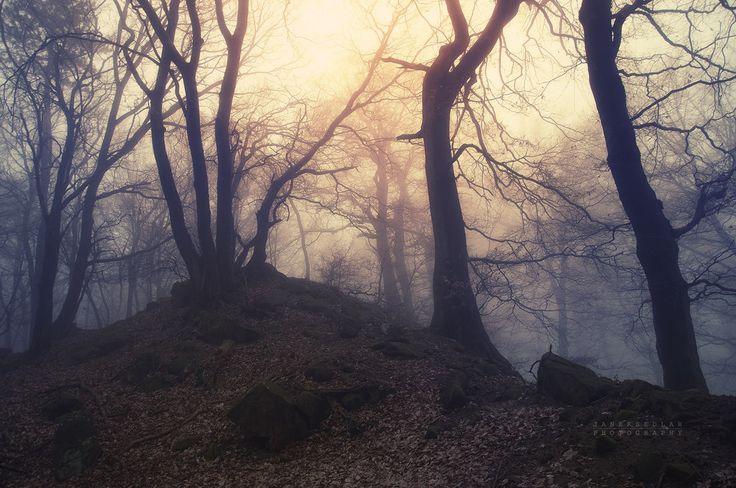 -Abandoned hill of silence- by Janek-Sedlar.deviantart.com on @deviantART